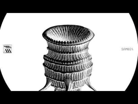 OAKE - Paysage dépaysé [Stroboscopic Artefacts SAM024]