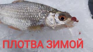 Ловля белой рыбы на спортивную мормышку Плотва клюет и в мороз и в оттепель