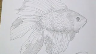 Tutorial - Como desenhar peixes / How to draw fish