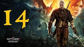 THE WITCHER 2: Assassins of Kings #14 | Let's Play