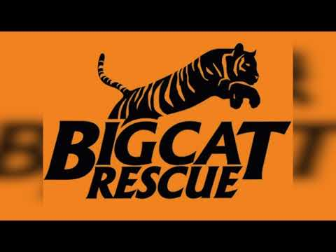 d3b17ead73847 2018 Annual Report | Big Cat Rescue