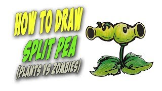 How To Draw Split Pea from Plants vs Zombies  – Mr. Cute Cartoon Drawing Club