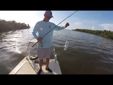 10,000 Islands Redfish Snook Fishing