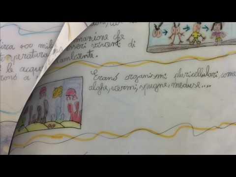 appunti di storia - classe terza