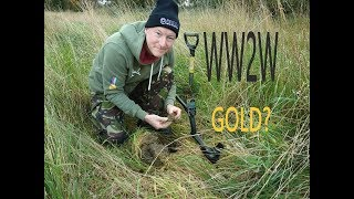 Gold found metal detecting?