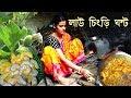 লাউ চিংড়ি ঘন্ট ll Traditional Bengali Recipe Law Chingri Ghanto ll Indian Village Food