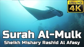 Surah Al Mulk (ASMR) سورة الملك: Sheikh Mishary Al Afasy مشاري العفاسي - English Translation