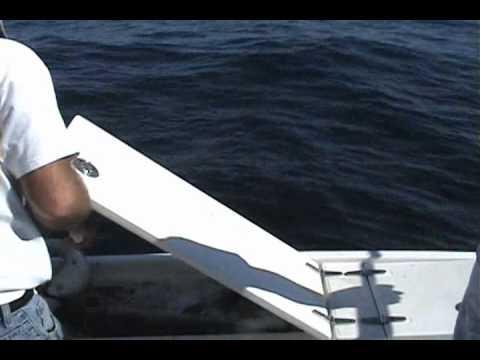 Fall Haddock Fishing Jeffery