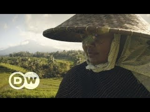 Indonesia: Balis water dilemma Founders Valley (8/10) | DW Documentary