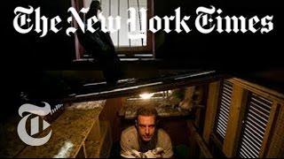 Brooklyn Artist Trains Pigeons to Smuggle Cuban Cigars