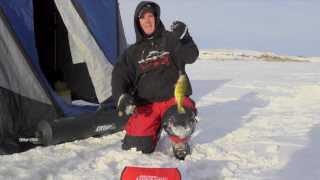 Fargo North Dakota Jumbo Perch - In-Depth Outdoors TV Season 8…