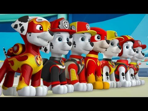 Paw Patrol Mighty Pups On a Roll Marshall | Fun Best Nickelodeon Games for Kids