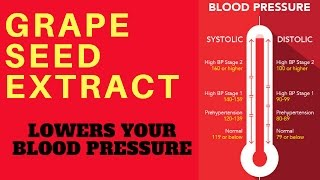 💔 Grape Seed Extract Lowers Your Blood Pressure - TIP - by Dr Sam Robbins