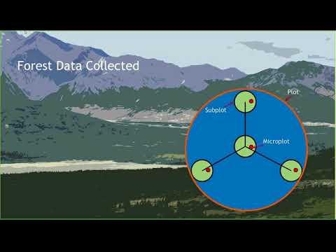 Webinar  - U.S. Forest Service Interior Alaska Forest Inventory and Analysis Program