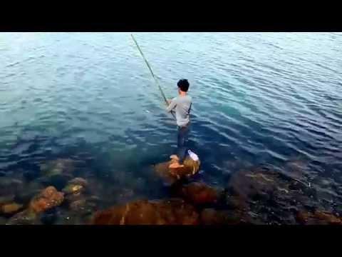 ตกปลาริมทะเล ช่วงปลากินถี่จนน่าสนุก fun fishing in keb beach