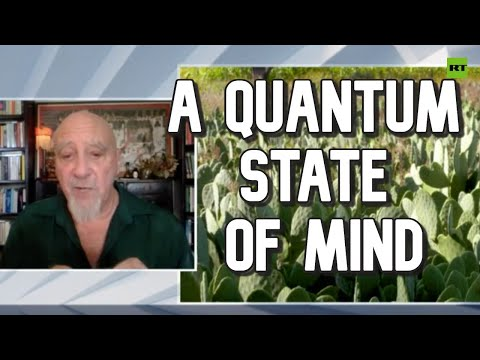 Quantum effects produce consciousness – brain researcher | SophieCo. Visionaries