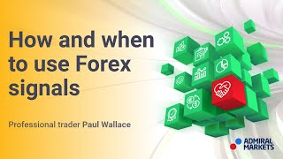 Most important decisions why companies traded on forex