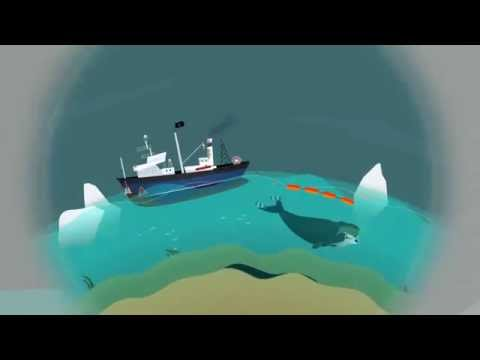 This is how Seismic Blasting works