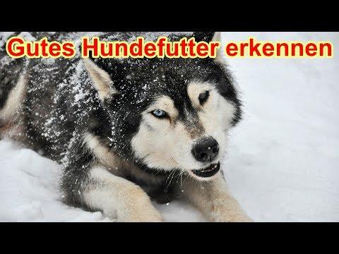 Hundefutter -  Woran Erkenne Ich Ein Gutes Futter ? / Nature Trails / Futterberatung