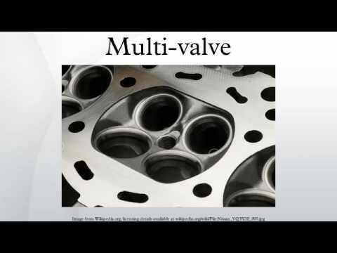Multi-valve