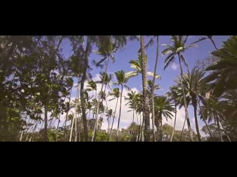 Solee - Sommerliebe (Original Video Edit)