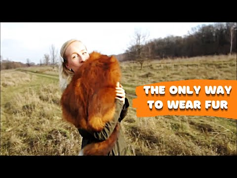 My Fox Was Kind To Show A New Russian Fashion Trend