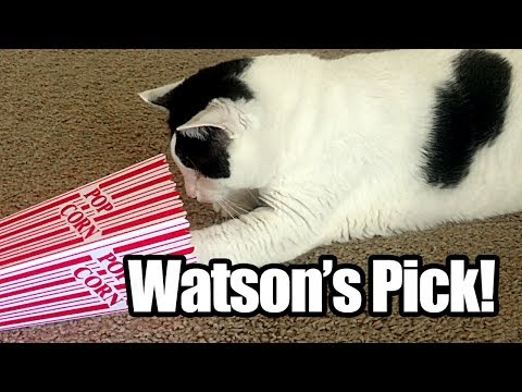 Watson's Pick + Cat Attack! 4X $75,000 Ca$h - Texas Lottery Scratch Off Tickets