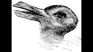 Duck or rabbit? The 100-year-old optical illusion that could tell you how creative you are