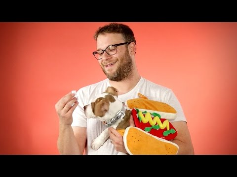 Thumbnail: Seth Rogen Answers Fan Questions While Playing With Hot Dog Dogs