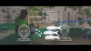 [PELUANG USAHA] Cara Budidaya Lele Sistem Bioflok