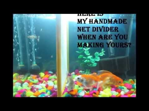 how to make my own fish tank divider