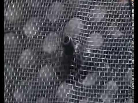 Filtro protector salvachispas para puerta de mini fragua o - Salvachispas para chimeneas ...