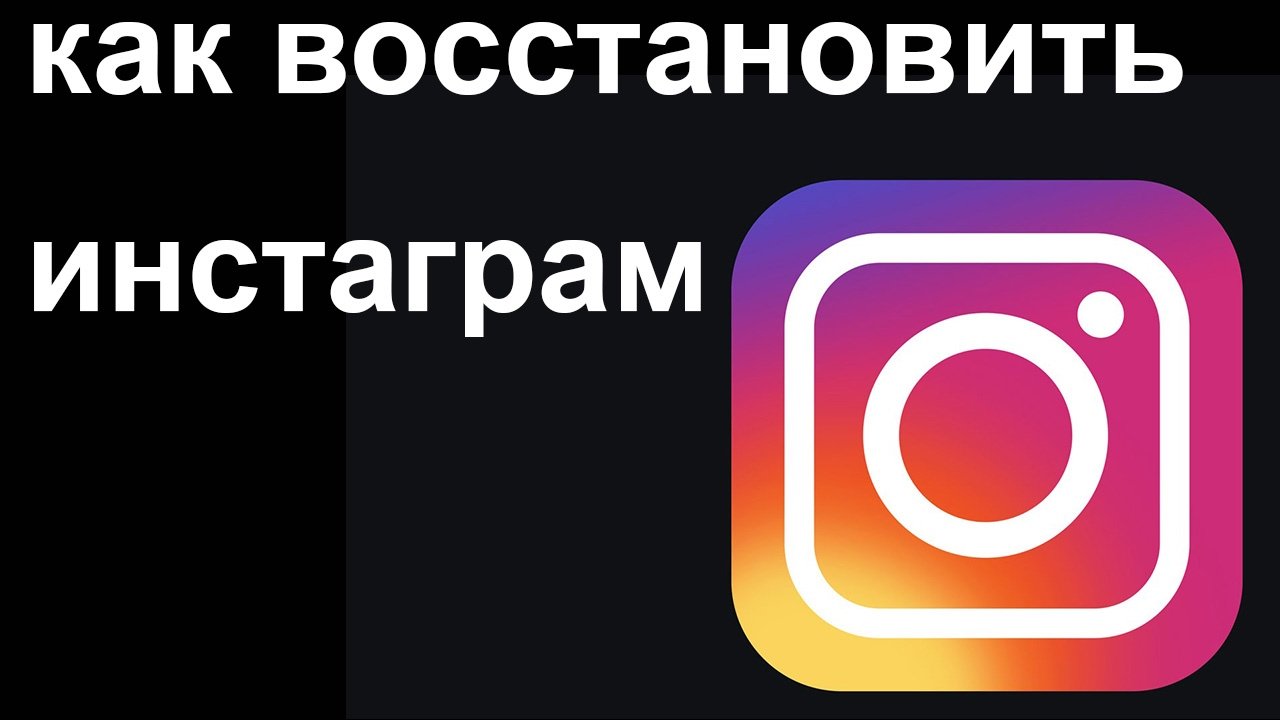 Instagram websta