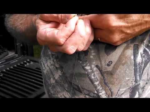 FISHING WITH A CRICKET ON A BAIT SAVER FISH HOOK (baitsaverhooks.com)