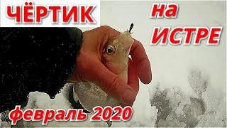 Рыбалка на чёртика на Истринском водохранилище Две рыбалки в феврале 2020 г