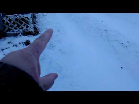 ALIEN CREATURE Footprints in Snow [???]