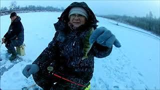 Зимняя рыбалка Окунь Густера