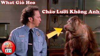 CƯỜI LÚ NGƯỜI Với 3 Phim Hài Dành Cho Người Yêu Động Vật | 3 Best Comedy Movies