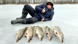 Пузатые Мамки по Последнему Льду Рыбалка в Башкирии Река Белая