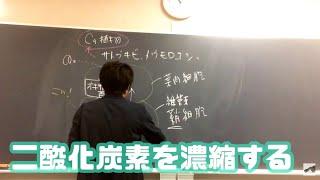 高校 生物 C4植物 字幕あり