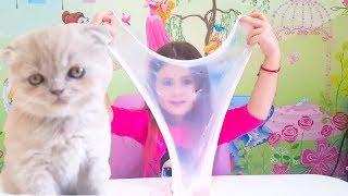 ШОК! МОЯ КОШКА СДЕЛАЛА СЛАЙМ! Kitty SLIME CHELLENGE//Like Taya