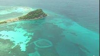 Antilles : Palm Island et Union Island