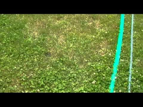 Oasis 3 Sprinkler Soaker Hose Review