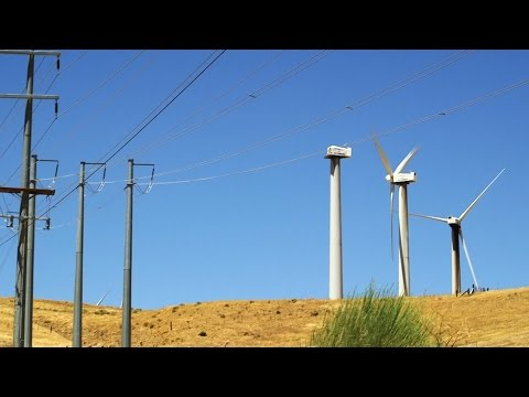 Who Cleans Up When a Wind Farm Retires?