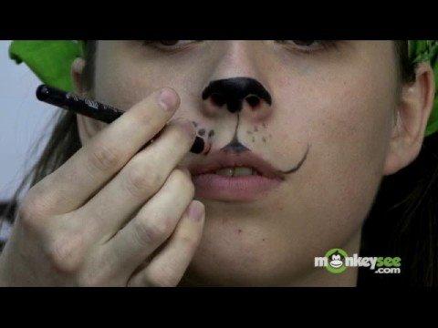 Costume Makeup How To Apply Cat Makeup Youtube - Cat-costume-makeup