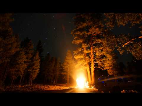 Williams Arizona Forest Campfire at Night