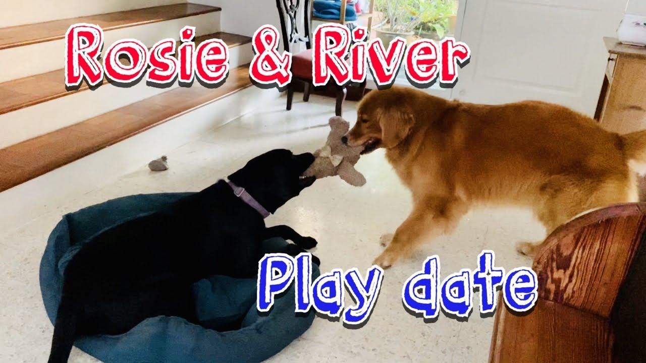 Rosie River