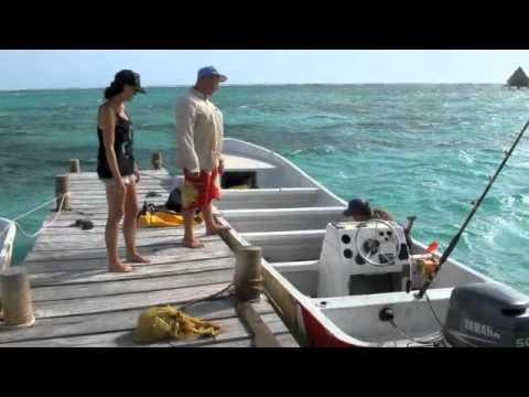 Deep sea fishing wahoo and barracuda belize youtube for Deep sea fishing belize