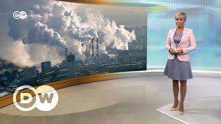 Как Арнольд Шварценеггер с экологами из РФ природу защищал – DW Новости (17.11.2017)