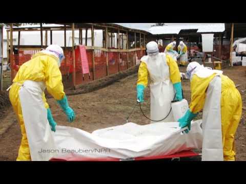 EVD: Ebola Virus Disease Outbreak